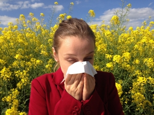 How Can I Find Relief from Allergies?